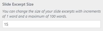 slider excerpt setting