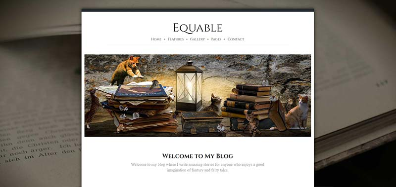 equable boxed 1200