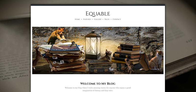 equable boxed 1400