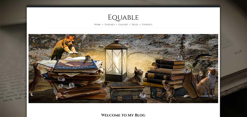 equable boxed 1600