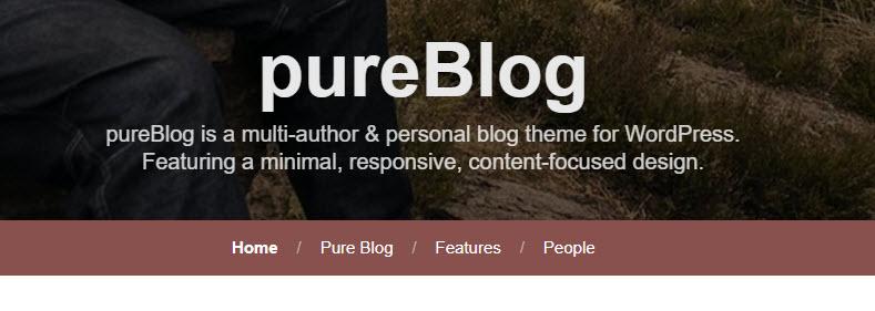 pureblog center fp title