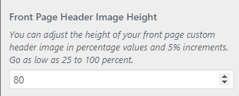 pureblog header height setting