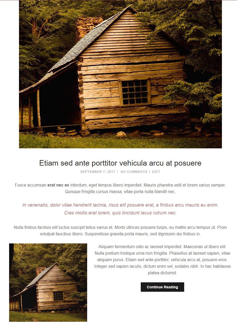 pureblog no excerpt example