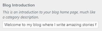 devise blog intro setting