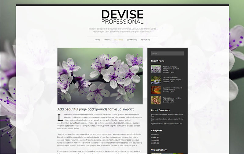 devise custom background
