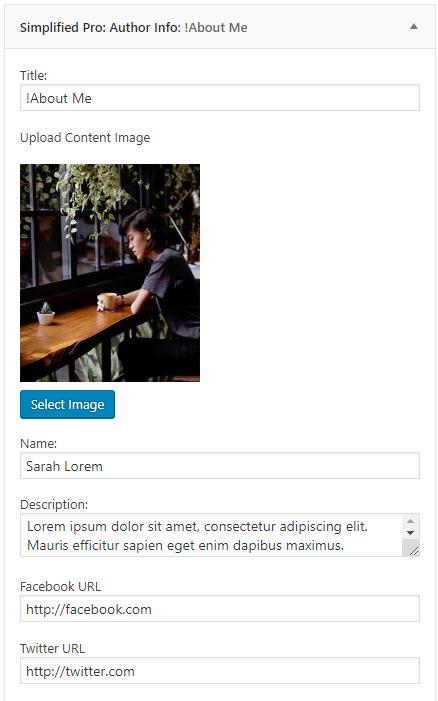 Simplified Pro Author Widget settings