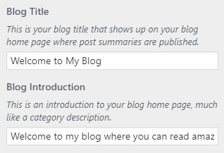 Simplified Pro Blog Intro Setting