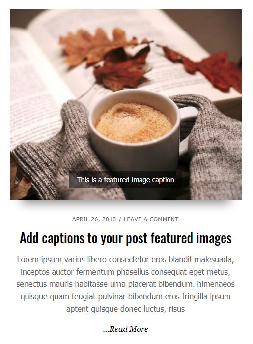 Simplified Pro Featured Image caption