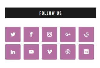 Simplified Pro Social Widget